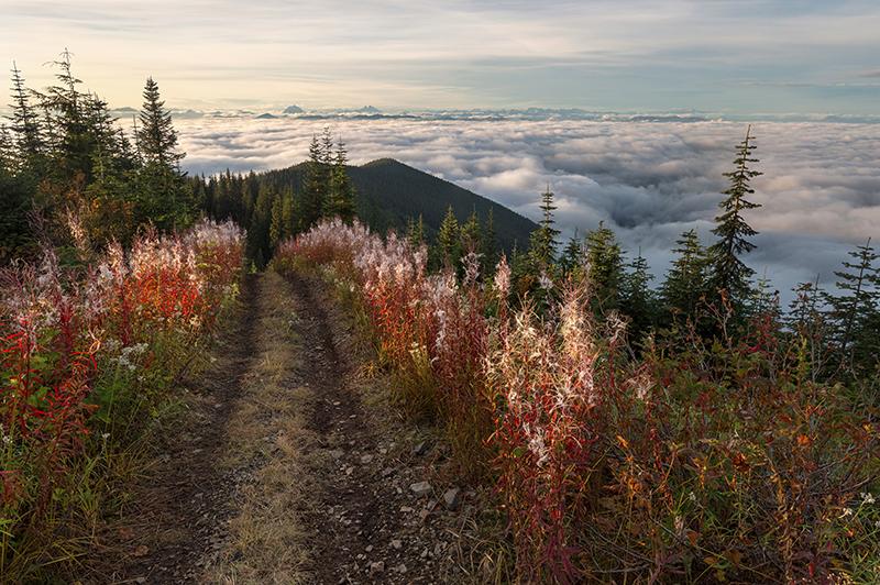 Sky Road by jasonwilde