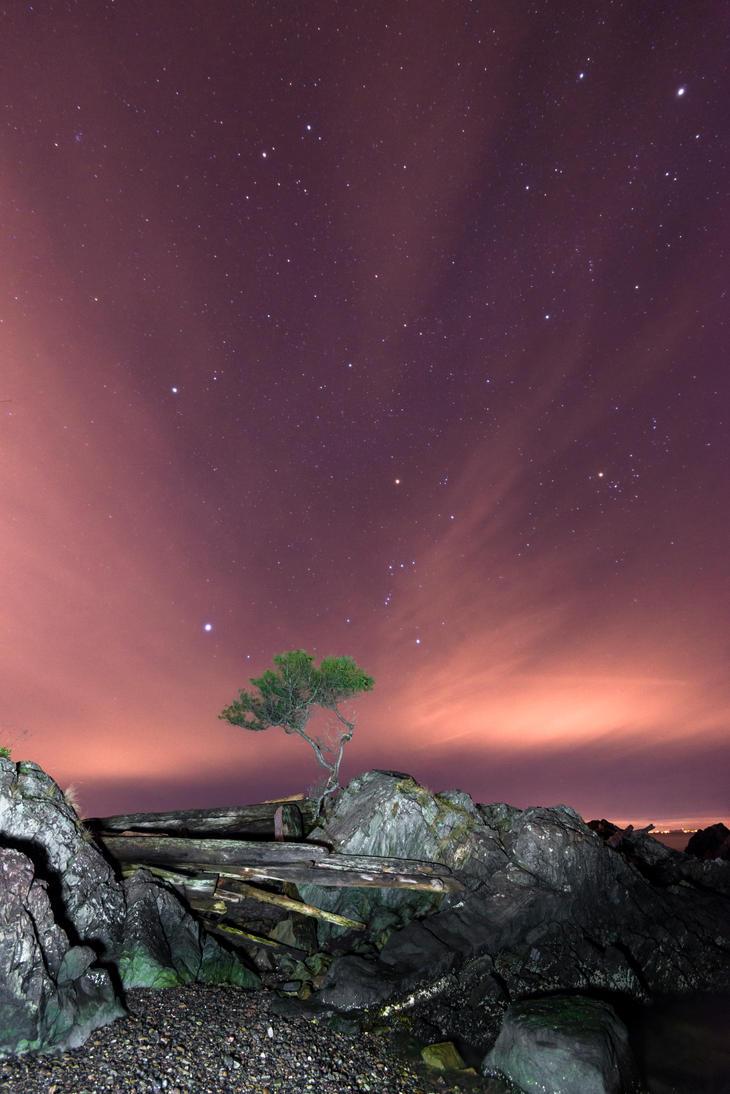 Star Dust by jasonwilde