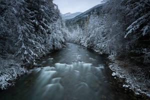 Winter Lives by jasonwilde