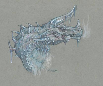 - i c e dragon -