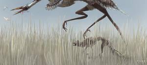 - grass sea -