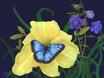 Blue Butterfly on Yellow Daylily by Cozmia