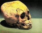 Mayan skull.