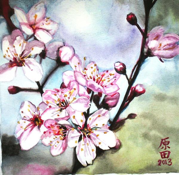 Sakura 2 by carmenharada