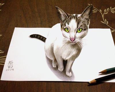 3D 12 Cat by carmenharada