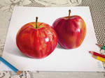 3D-13  Two Apples