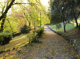 Fall Lane by eugeal-stock