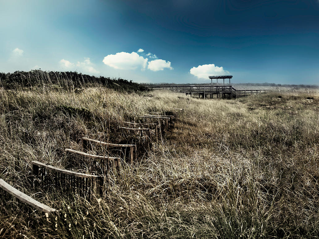 A Summer Forsaken by skdennard