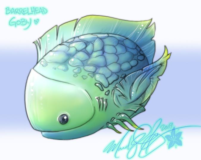 Barrelhead Goby by Mandy-Mo
