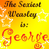 The Sexiest Weasley 6 by LestatMalfoy
