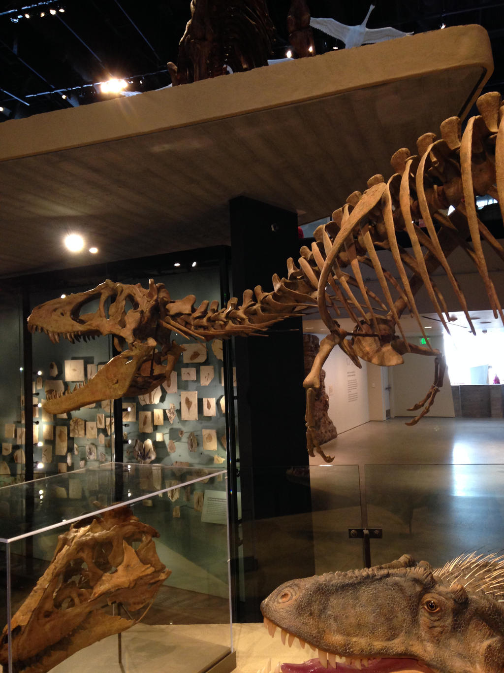 Journey to SLC MNH 27 by Sting-raptor