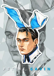 Follow to the rabbit