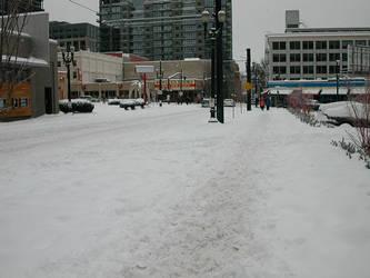 powell's snowpocalypse