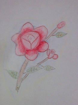 First Flower attempt.