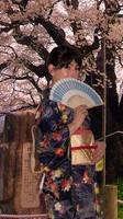 Kimono and Sakura by hariana