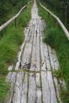 wooden road