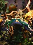 Lizards in Love