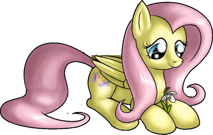 Fluttershy by SkorpionLetun