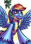 Rainbow Dash and mistletoe
