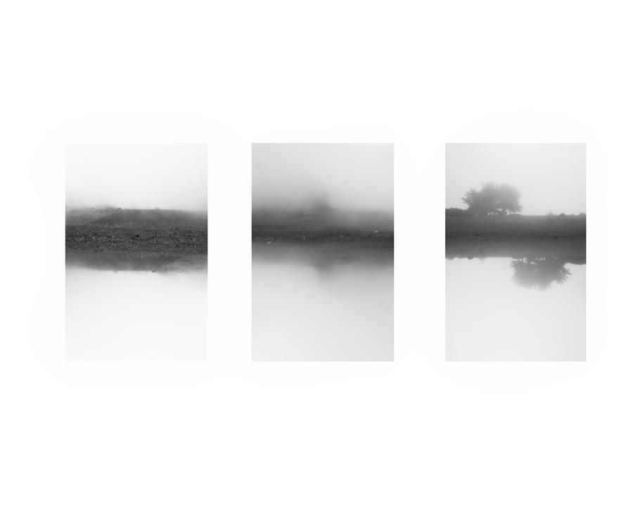 Polvo, niebla y una meditada.. by alonsio