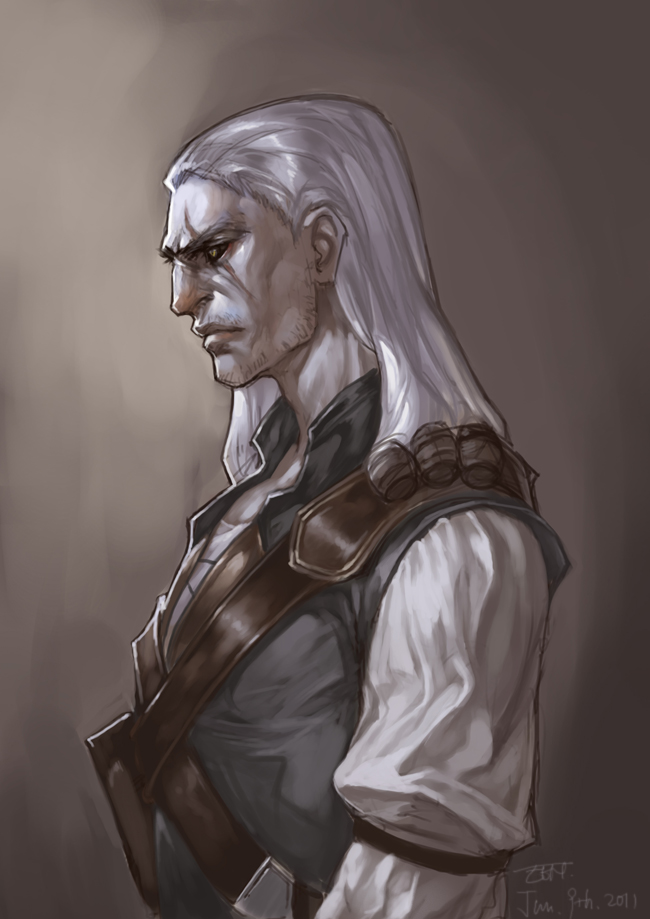 witcher by narrator366