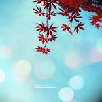 printemps iv by pprincessbydawn