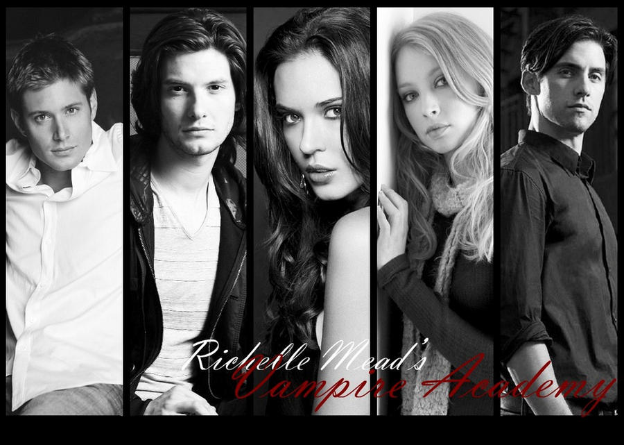 Vampire Academy by Syn...