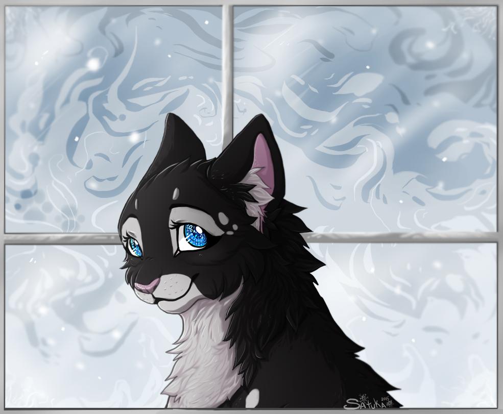 cold window by Satuka