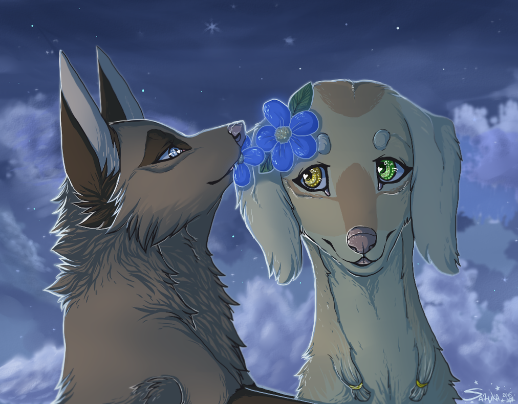 mystery tenderness by Satuka