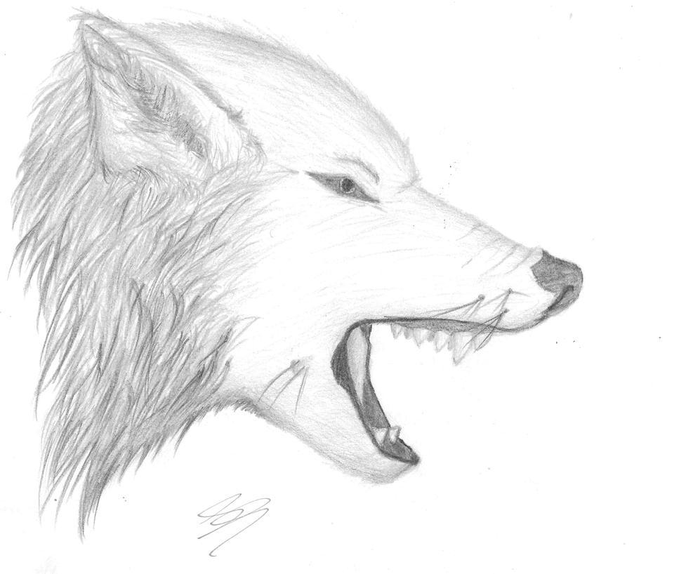 картинка волка нарисовать на листочке