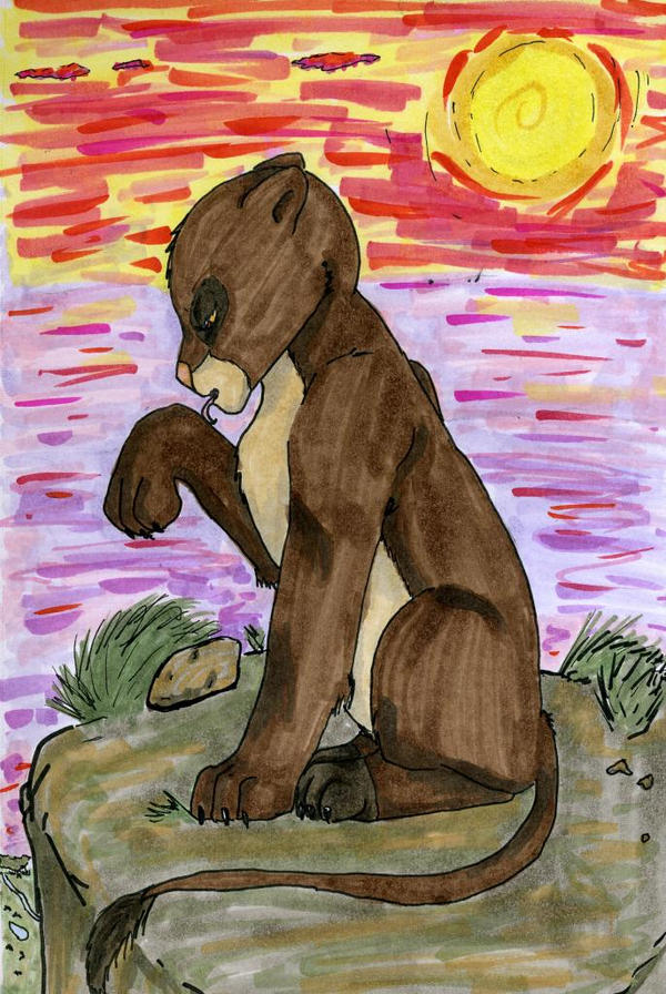 lion sunset by Teazerkitt