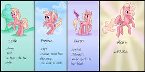 The Problem With Alicorns