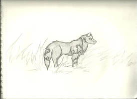 Wolf Spirit by Mockradrake