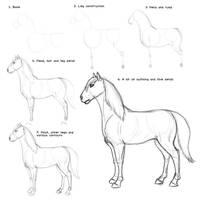 Basic Horse Tutorial by TigressDesign