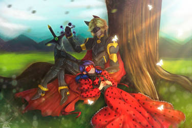 Knight Cat Noir and Ladybug {speedpaint}