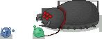 My new pet by Colorcatcher