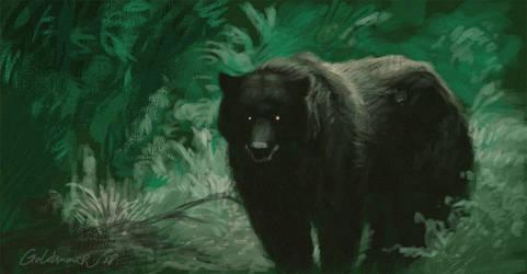 Bear study by GoldammerArt