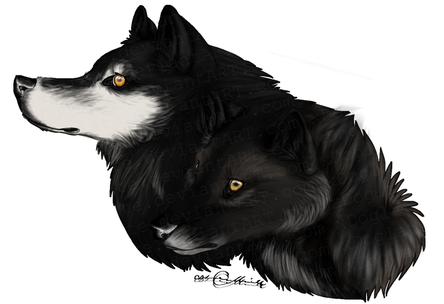 Alpha and Beta of Spinal Moon by xDoglate