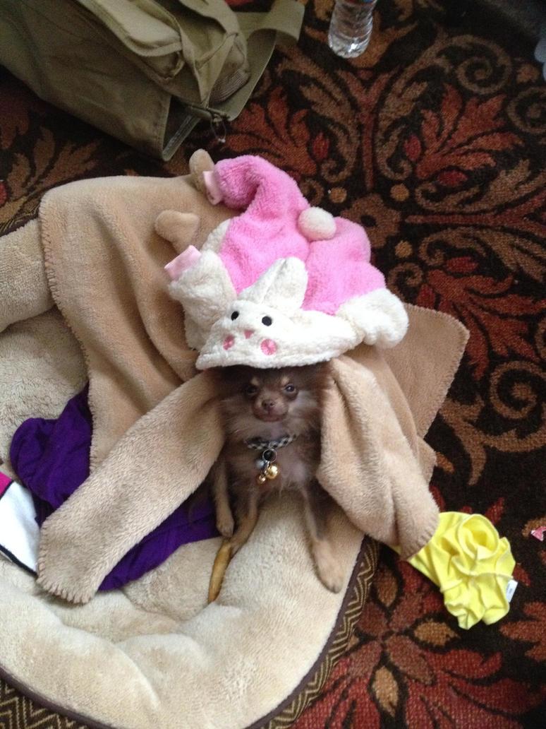 Micro Bunny!!! by Andromidicus