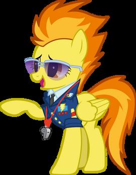 Spitfire praise