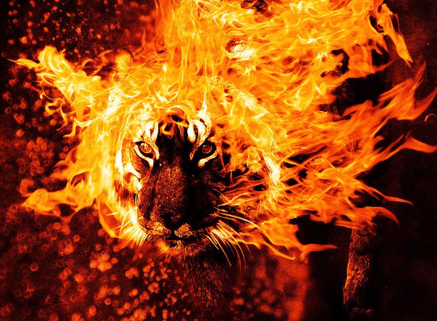 Burning Stare by Manitus