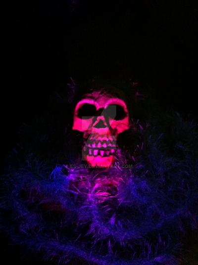 Skull by Es-Jey