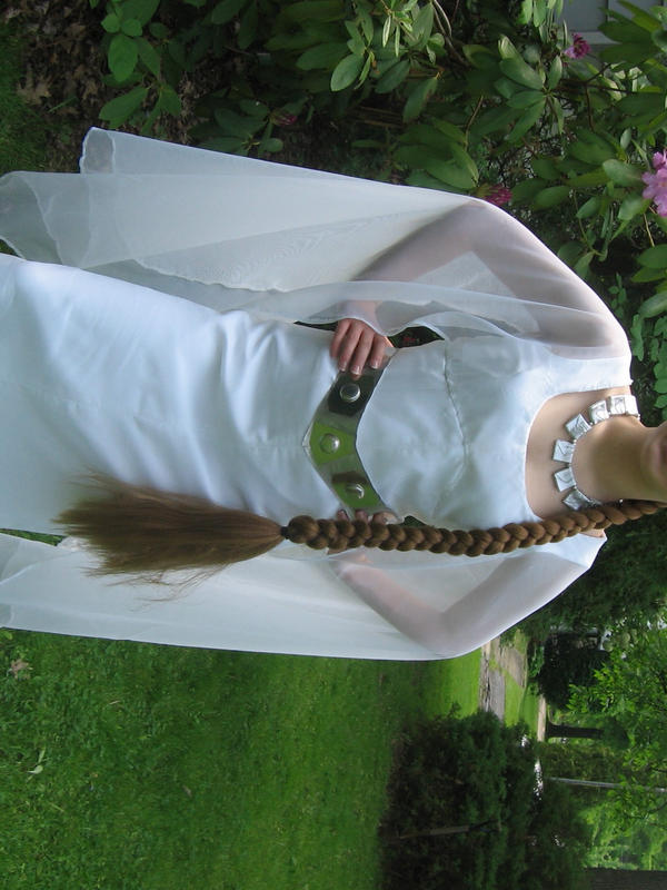 Leia\'s Ceremonial Gown by LadyofRohan87 on DeviantArt