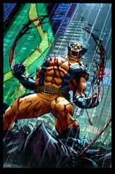 Wolverine_Ed Mcguiness