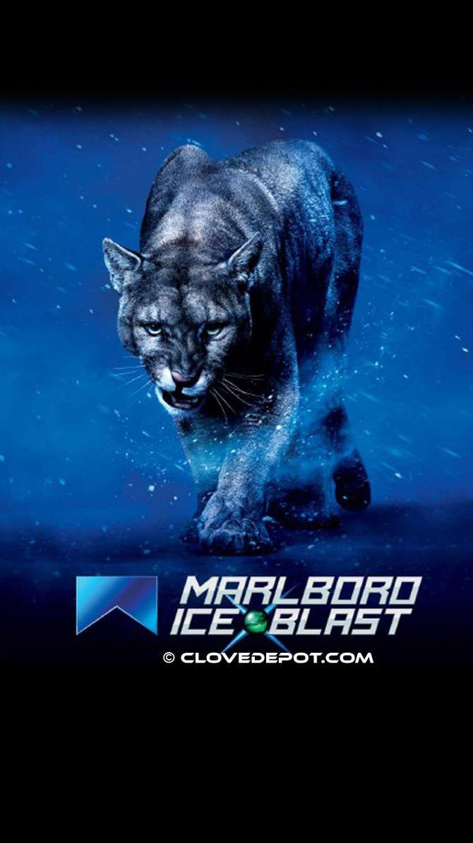 tiger ice wallpaper free download gamefree download game