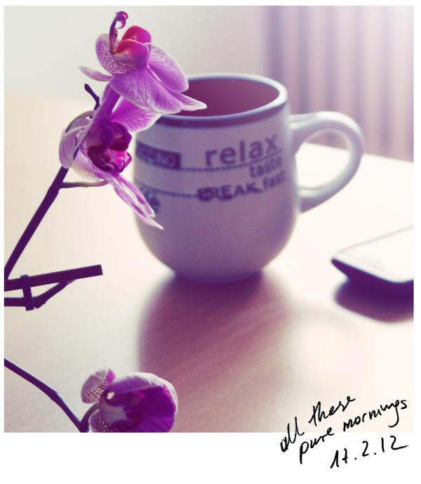 najromanticnija soljica za kafu...caj - Page 6 All_the_pure_mornings_by_ibohemian-d4r5jnp
