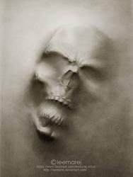 skull by leemarej