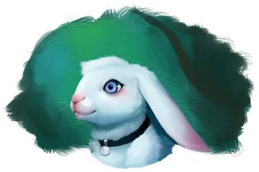Bunny by Caindra
