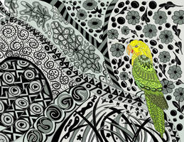 Bird in the Wilderness