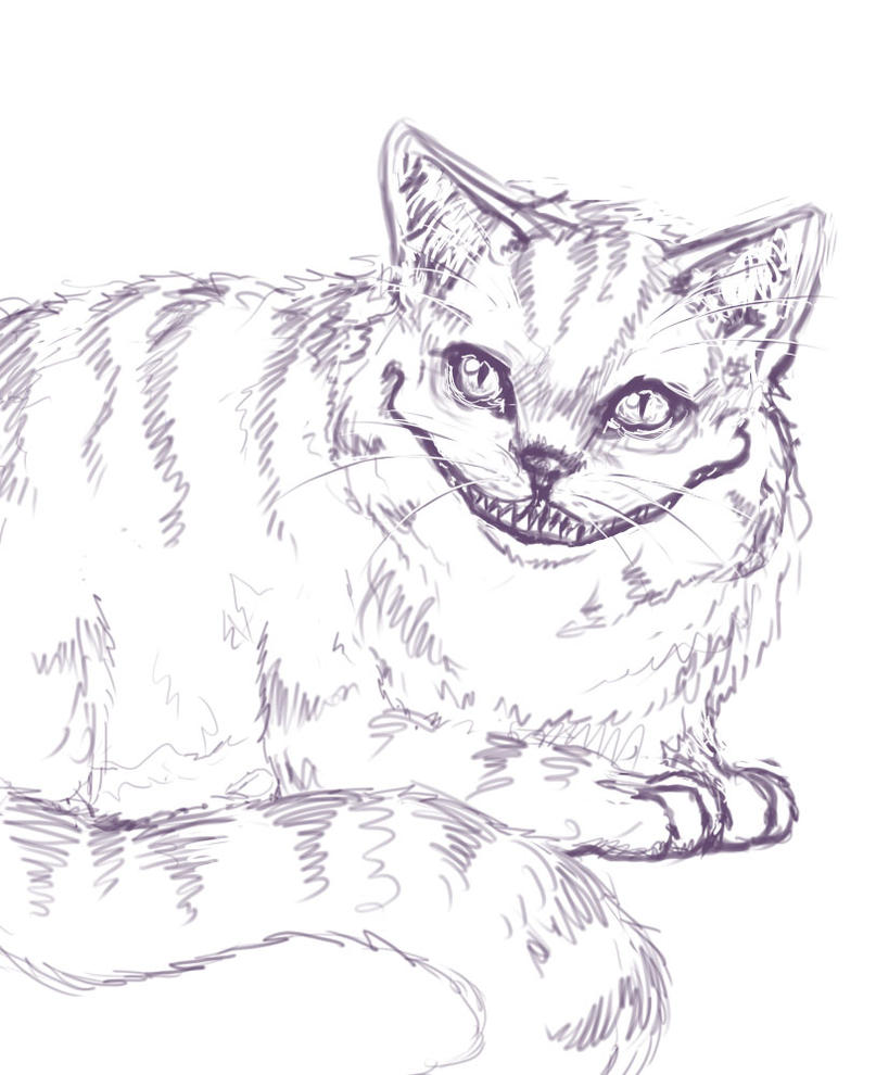 cheshire cat sketch by wiccimm on deviantart